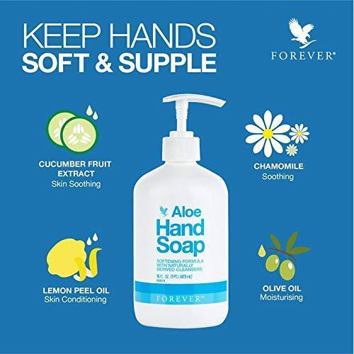 Composants Aloe Hand Soap