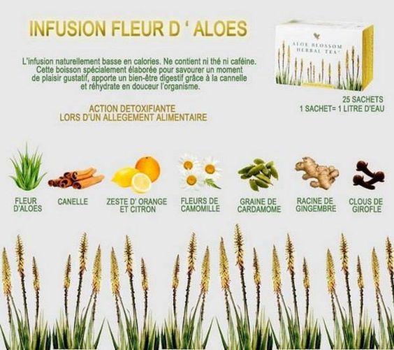 Ingrédients Aloe Blossom Herbal Tea